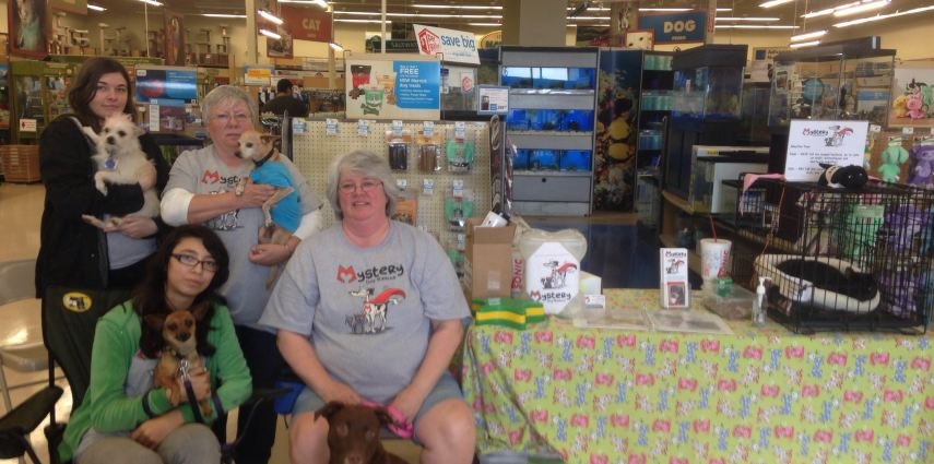 Petco kicks off <span>National Adoption Weekend!</span>